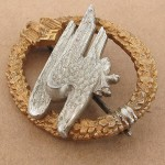 Army_Para_Badge jun (3)